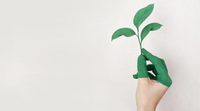 Les objets publicitaires se mettent au vert en 2021